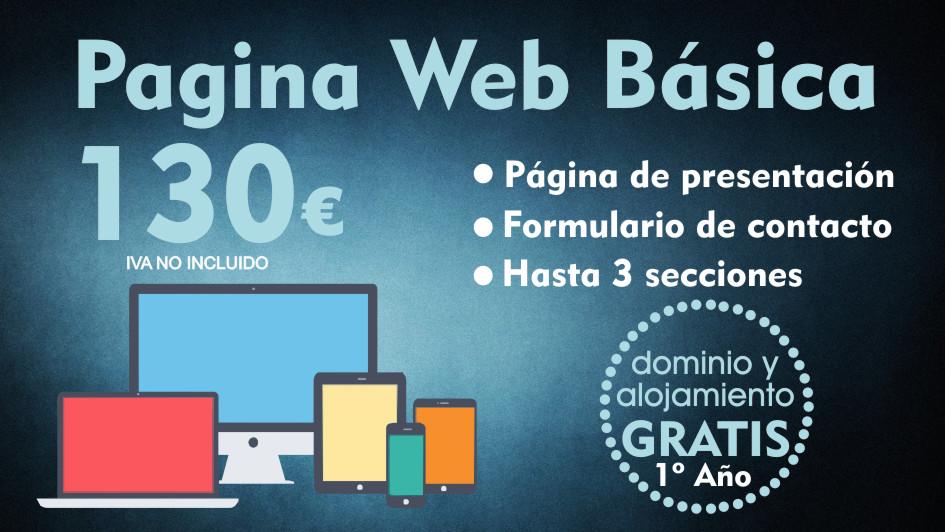 Web 130,00 €